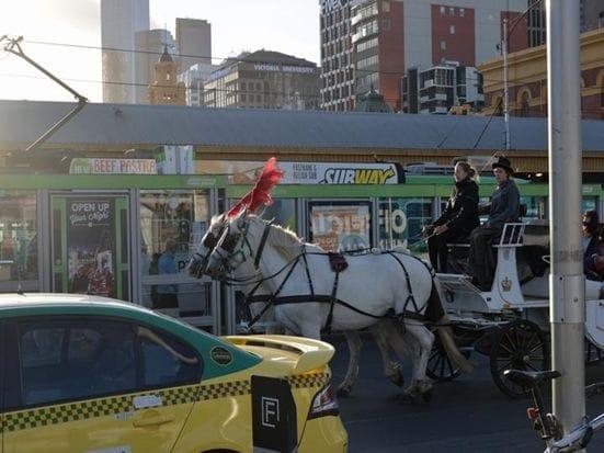 街中ではこうした馬車をよくみかけます