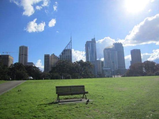 ボタニカルガーデンから眺めるシティ。都会の中にも、こうした自然があるのがシドニーの魅力