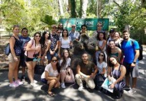 世界最大のコアラ園に行ったり。
